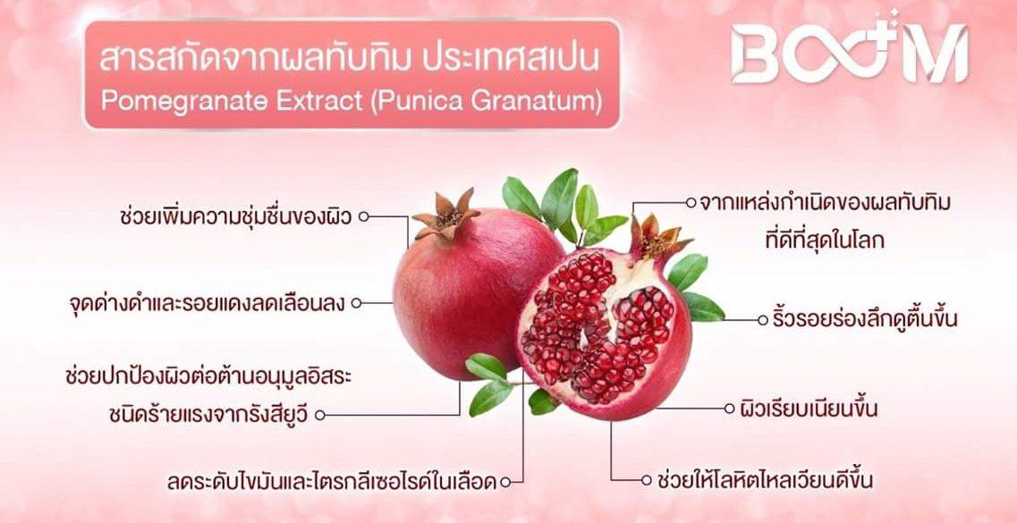 สารสกัดจากทับทิมสเปน (Pomegranate Extract) บลูม boom