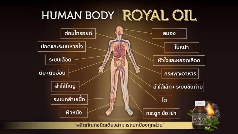 royaloil ราคา เท่าไหร่