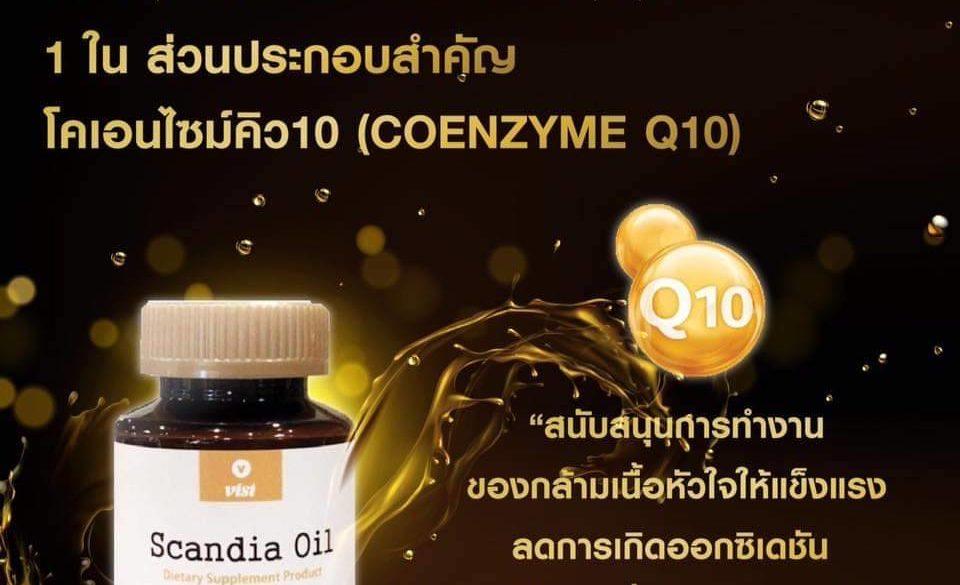 SCANDIA Oil รวม 15 น้ำมันสมุนไพรสกัดคัดมาจากทั่วทุกมุมโลก